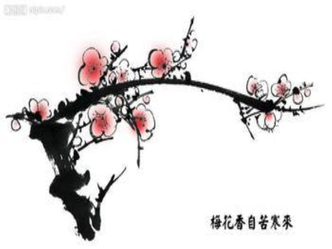 梅花图片powerpoint演示文稿.ppt