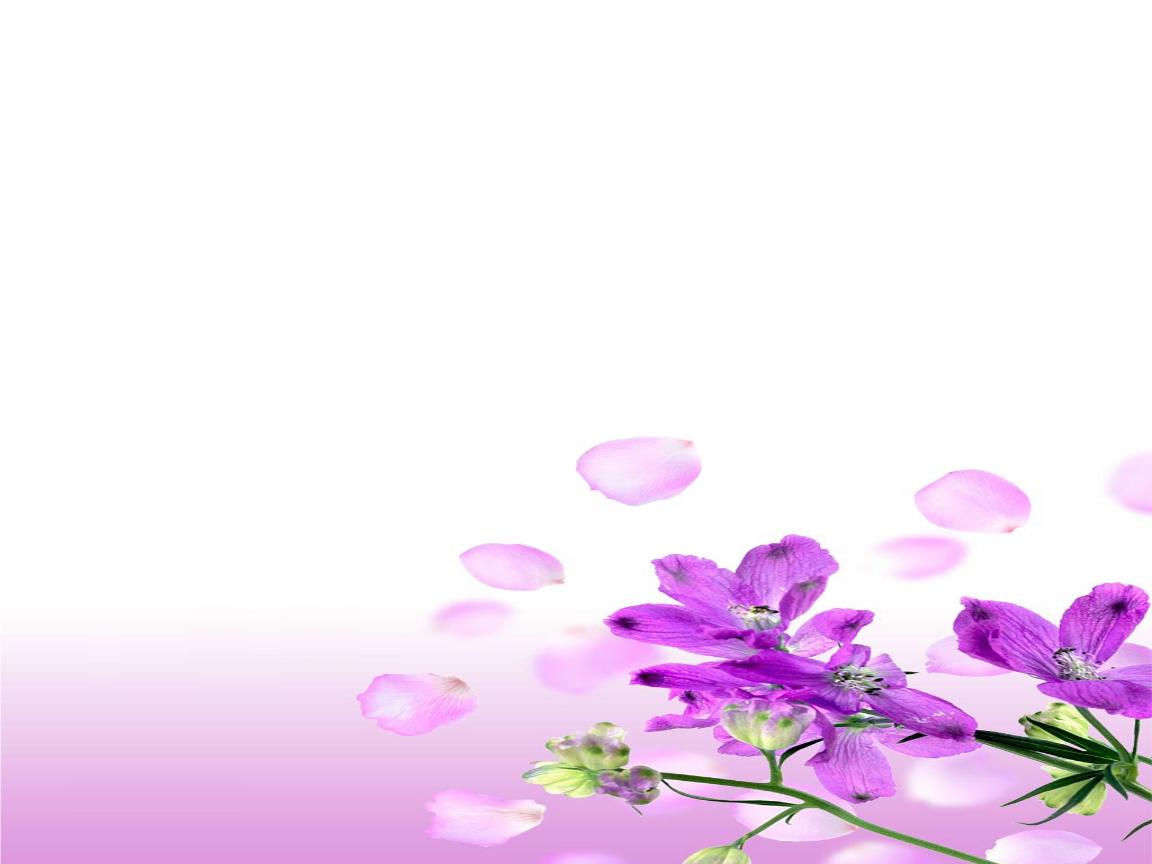 壁纸 花 设计 矢量 矢量图 素材 桌面 1152_864
