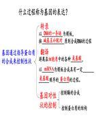基因的表达(高二上期末复习).pptx