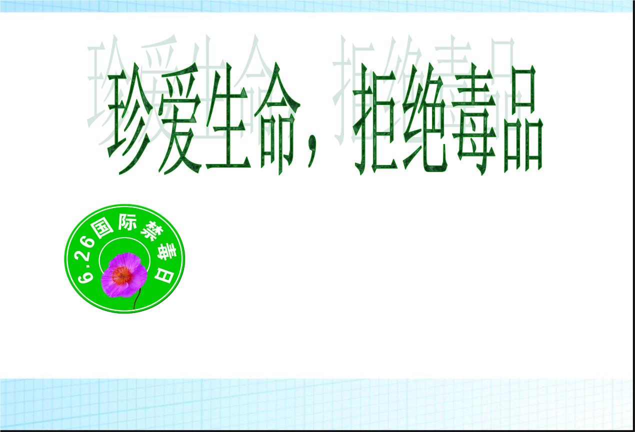 主题班珍爱生命_拒课件绝品班主题.ppt跆拳道教学中文图片