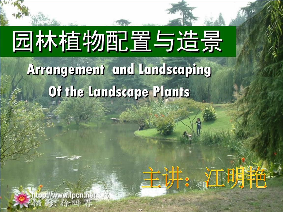 园林植物配置与造景水生植物课件.ppt