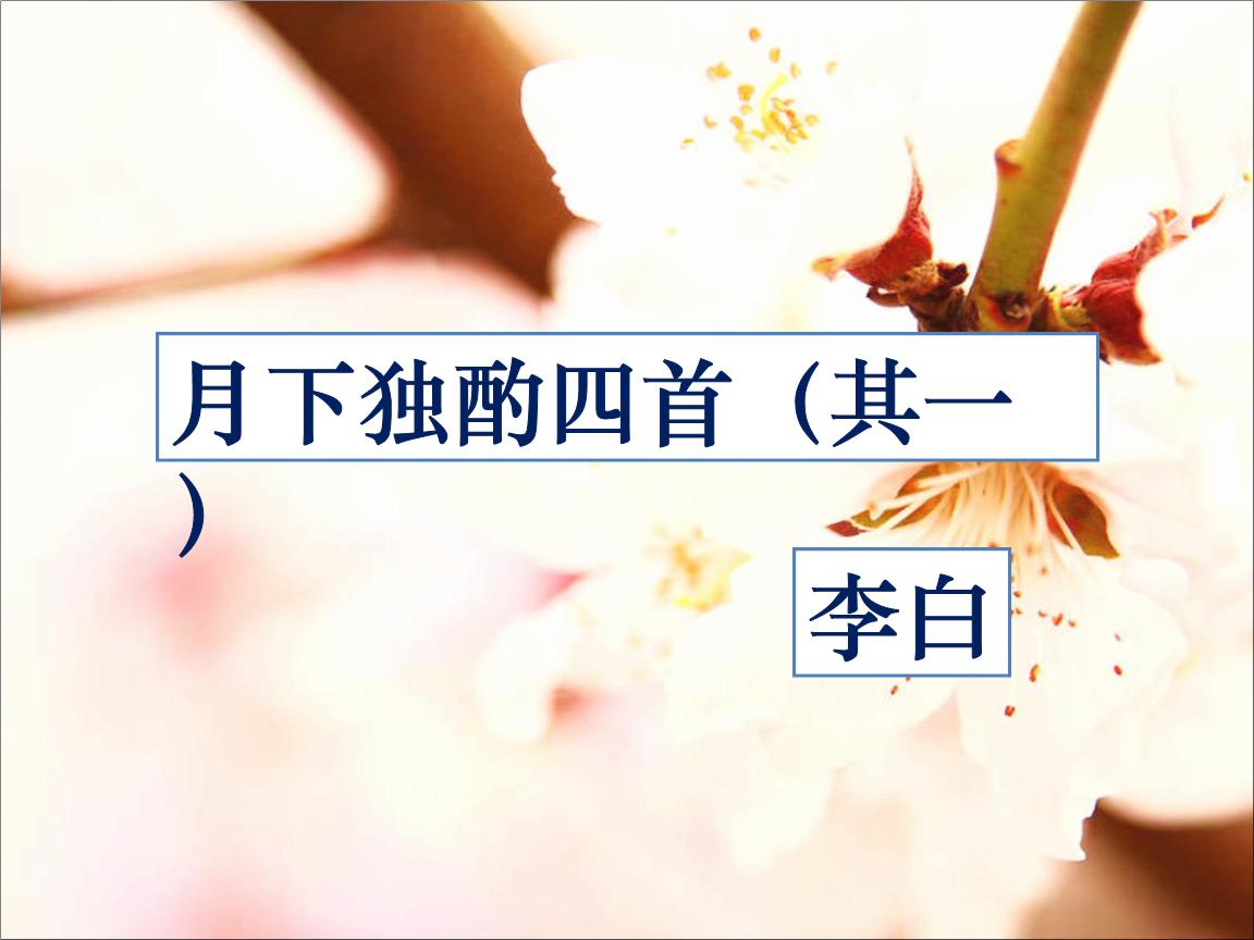 月下独酌四首(其一).ppt图片