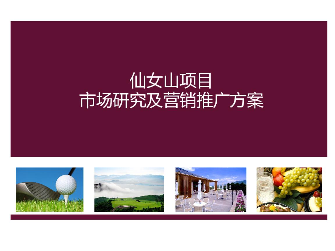 2012年旅游地产整合营销推广计划书价格别墅之国报告美苏州技术图片