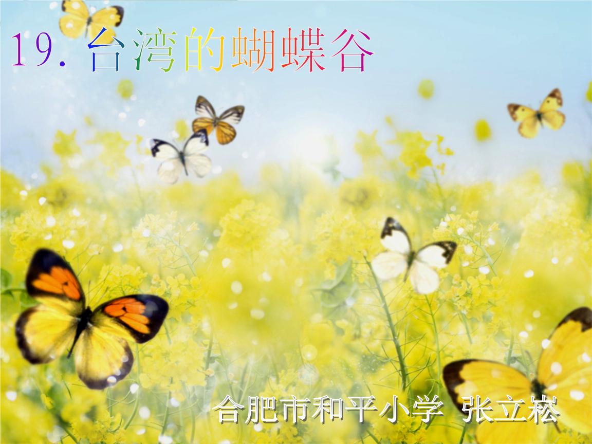 19 台湾的蝴蝶谷 .ppt