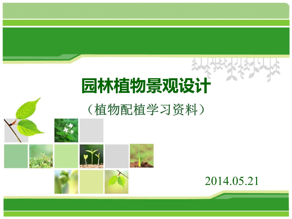园林图片景观设计的精要要求图纸.ppt标志设计的线稿植物图片
