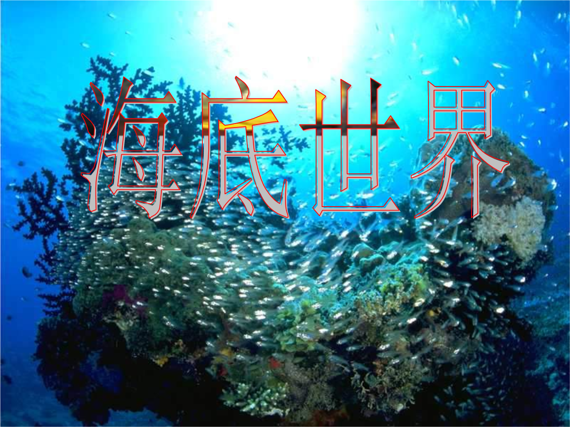 海底世界第二课时课件.ppt