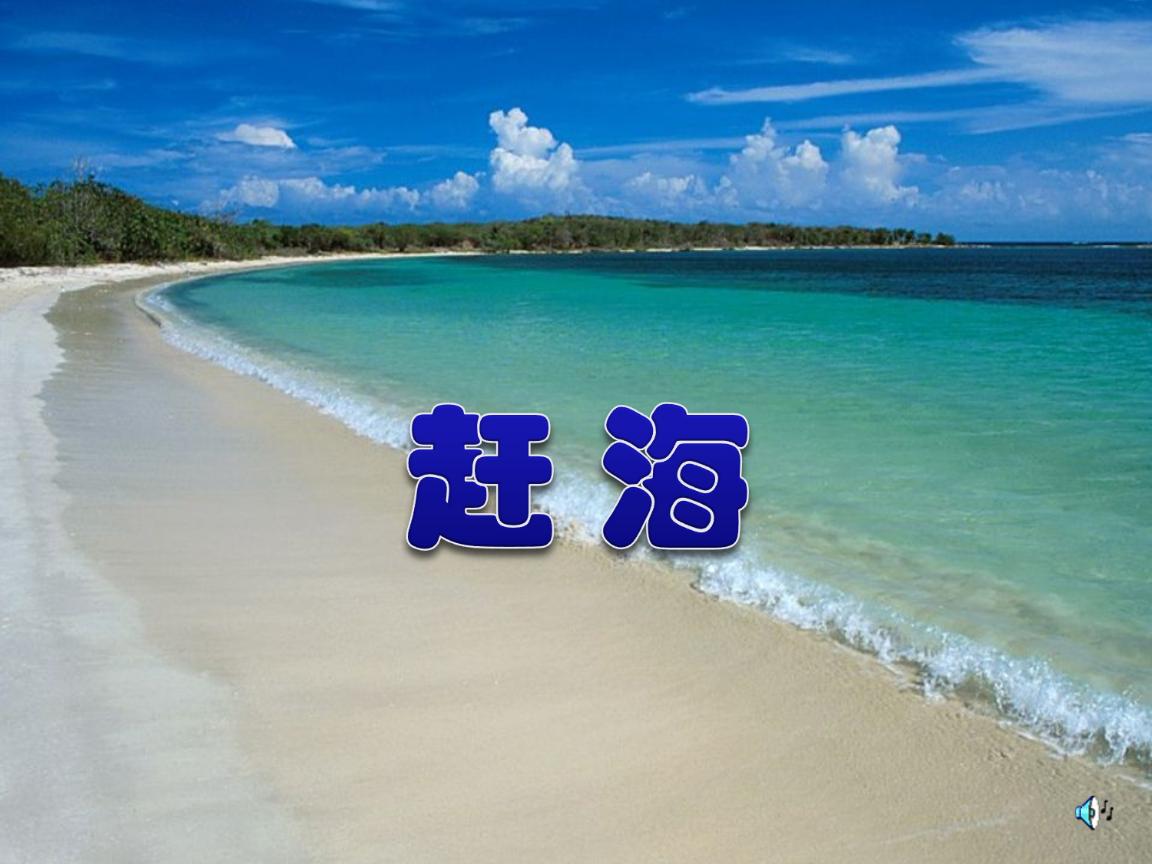 苏教版三年级下册第11课赶海.ppt