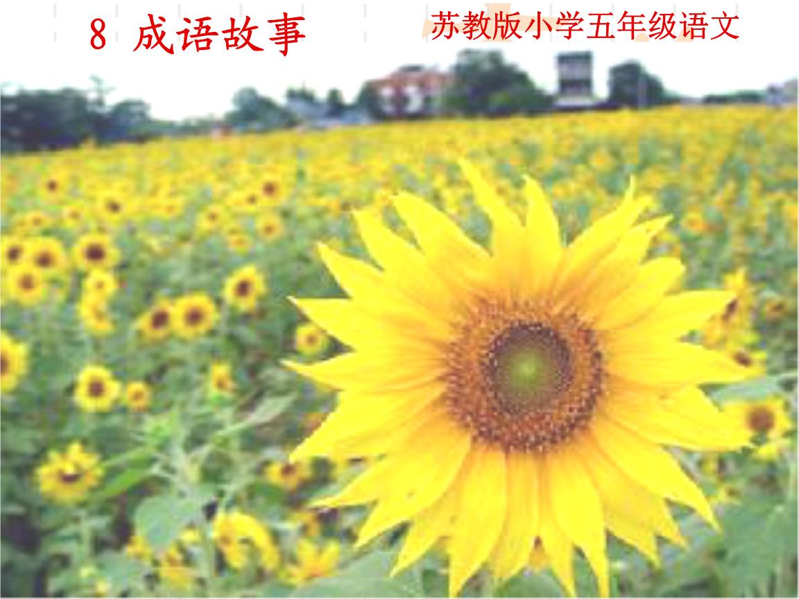 8成语故事qqt.ppt邦汇鑫新美食城东营图片
